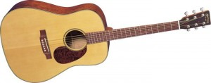 Martin SWDGT Drednought Acoustic Guitar